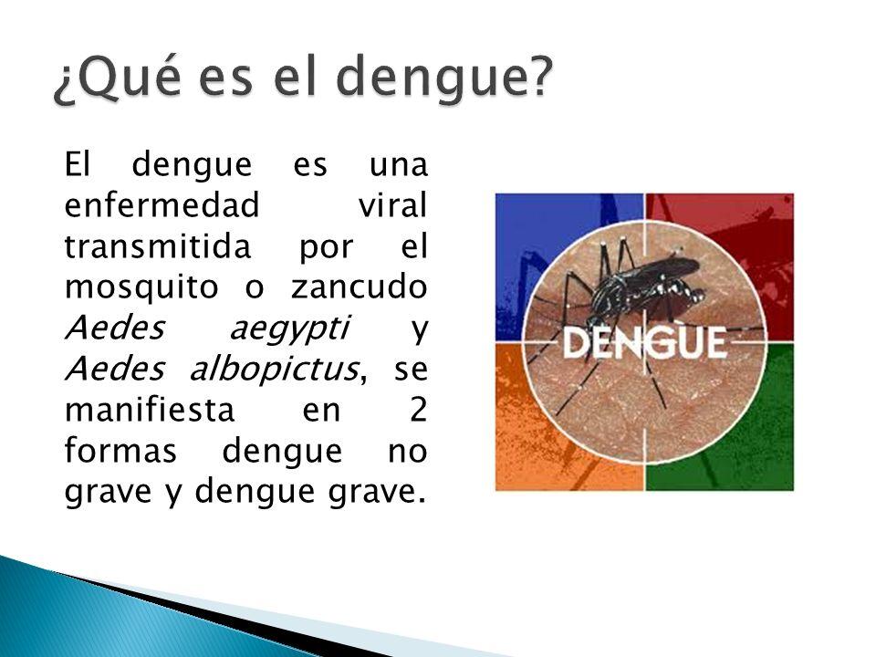 Lo produceLo transmite Un virus del cual hay 4 serotipos El mosquito o zancudo Aedes hembra Serotipo I, serotipo II, Serotipo III y Serotipo IV