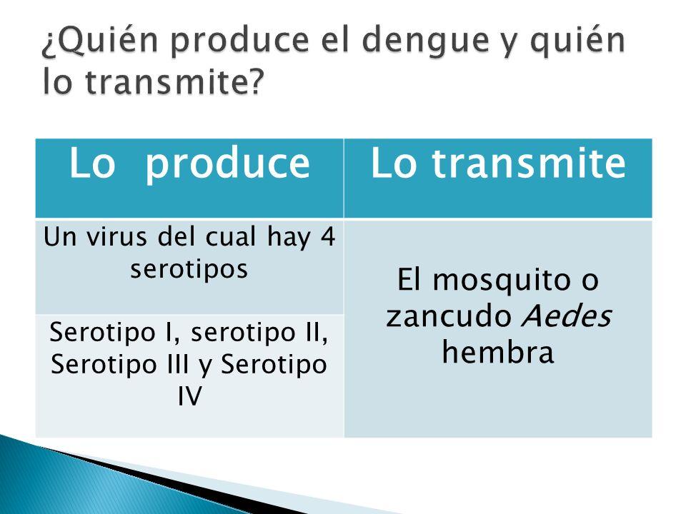Persona enferma Persona sana Mosquito infectado Mosquito