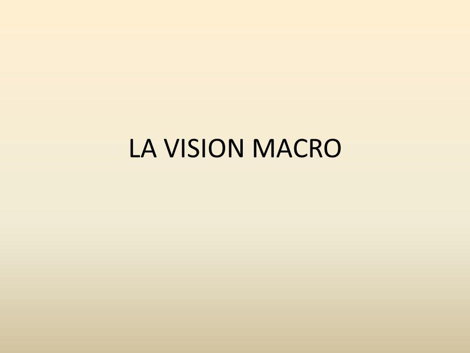 LA VISION MACRO