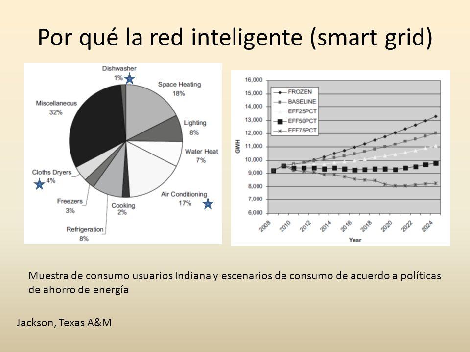 Por qué la red inteligente (smart grid) Jackson, Texas A&M Muestra de consumo usuarios Indiana y escenarios de consumo de acuerdo a políticas de ahorr