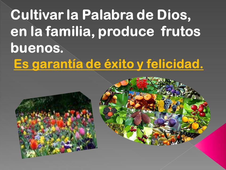 Cultivar la Palabra de Dios, en la familia, produce frutos buenos. Es garantía de éxito y felicidad.