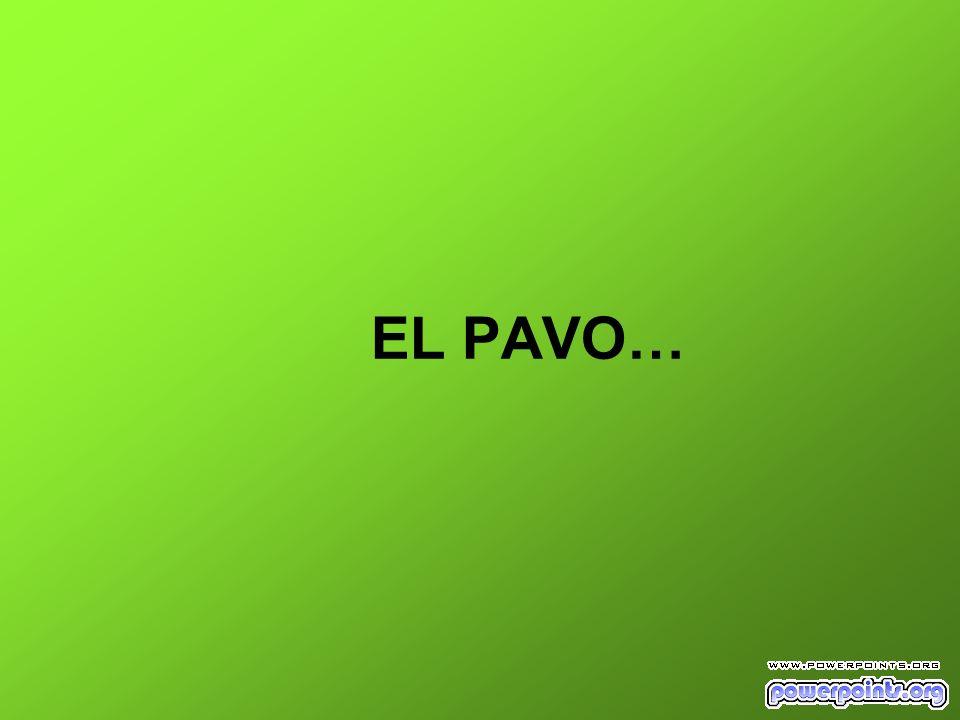 EL PAVO…