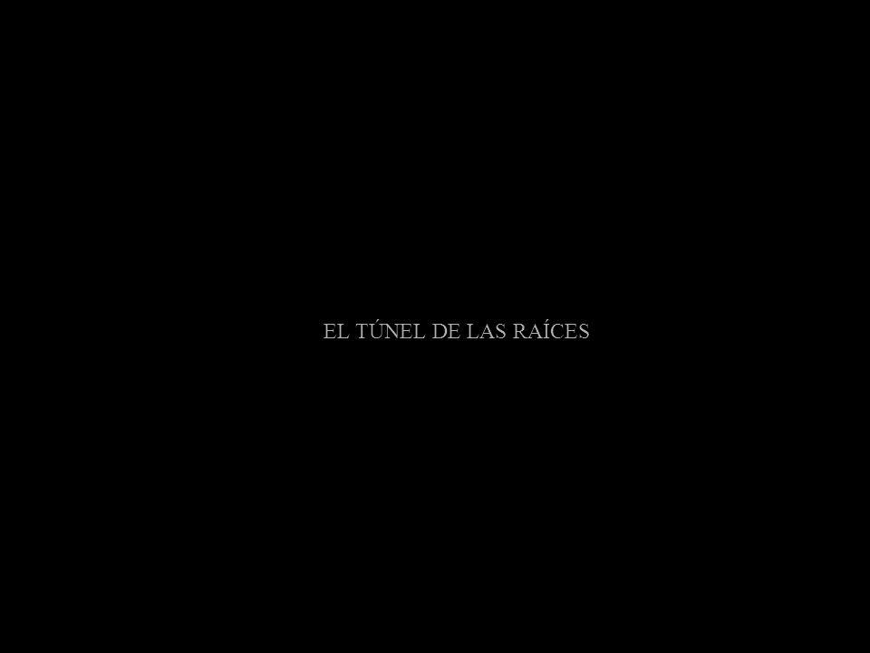 EL TÚNEL DE LAS RAÍCES