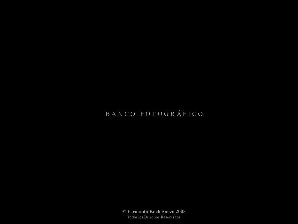 B A N C O F O T O G R Á F I C O © Fernando Koch Suazo 2005 Todos los Derechos Reservados.