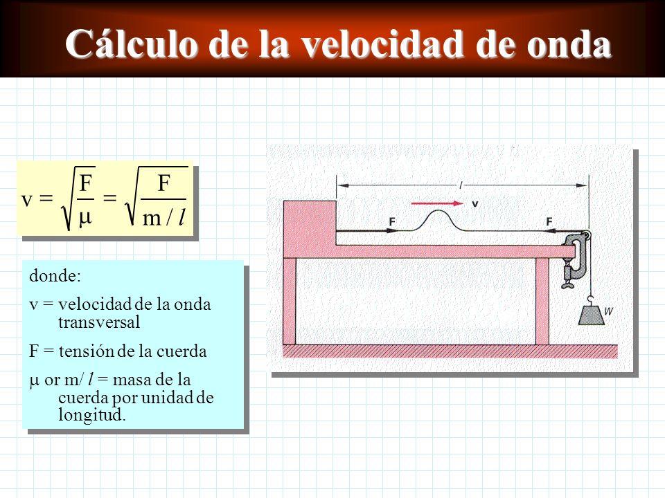 Tipos de ondas En una onda transversal la vibración de las partículas individuales del medio es perpendicular a la dirección de la propagación de la o