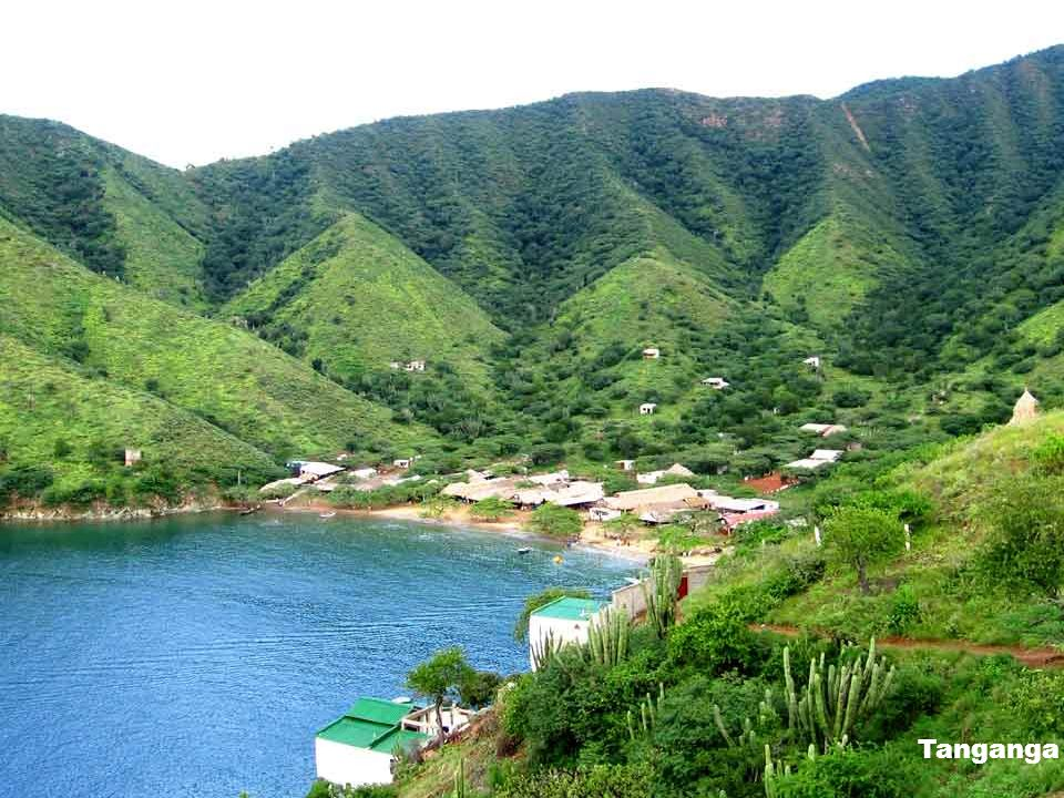 Tanganga