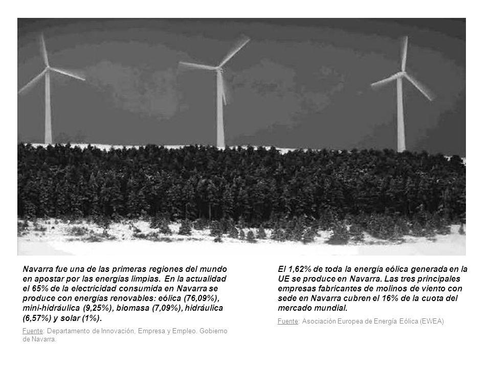 Navarra fue una de las primeras regiones del mundo en apostar por las energías limpias.