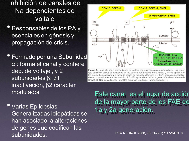 Inhibición de canales de Na dependientes de voltaje Responsables de los PA y esenciales en génesis y propagación de crisis. Formado por una Subunidad