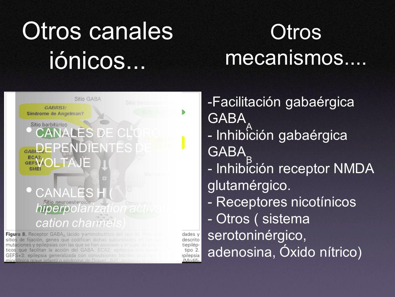 CANALES DE CLORO DEPENDIENTES DE VOLTAJE CANALES H ( hiperpolarization activated cation channels) Otros mecanismos.... -Facilitación gabaérgica GABA A