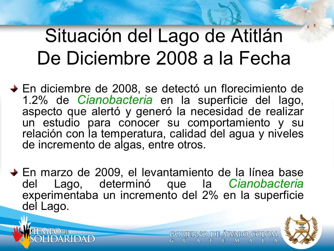 Situación del Lago de Atitlán De Diciembre 2008 a la Fecha En diciembre de 2008, se detectó un florecimiento de 1.2% de Cianobacteria en la superficie