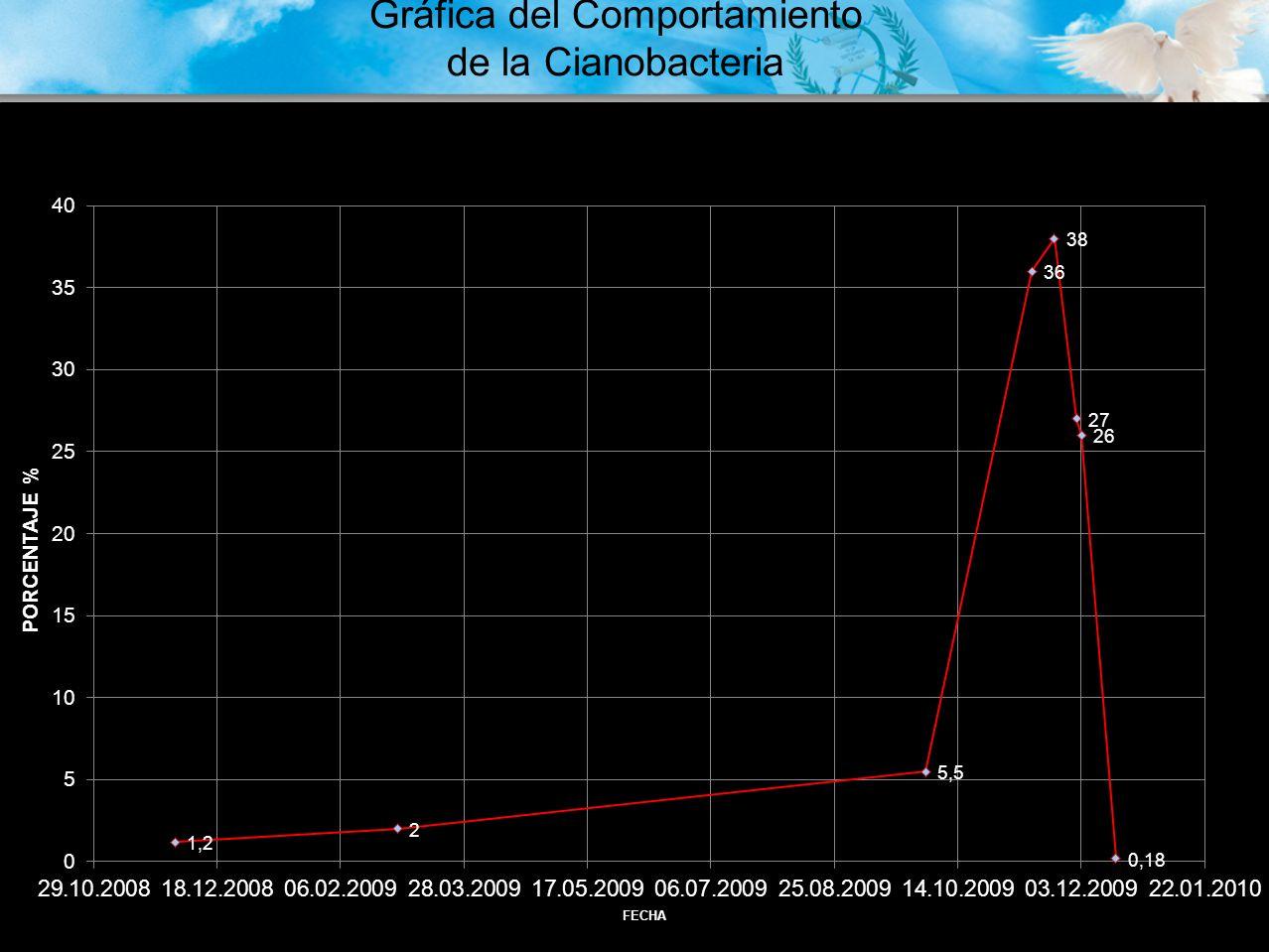 Históricamente la temperatura del Lago de Atitlán ha fluctuado entre 16 o C y 20 o C, observándose incrementos graduales en los últimos 10 años hasta alcanzar una temperatura superficial entre 23 o C y 27.5 o C en 2008