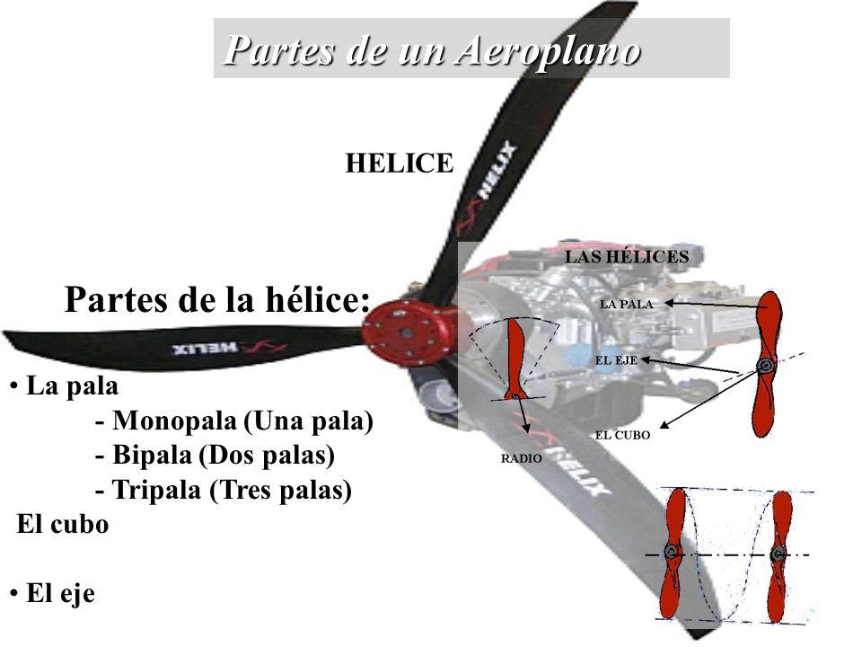 Partes de un Aeroplano Partes de la hélice: La pala - Monopala (Una pala) - Bipala (Dos palas) - Tripala (Tres palas) El cubo El eje HELICE