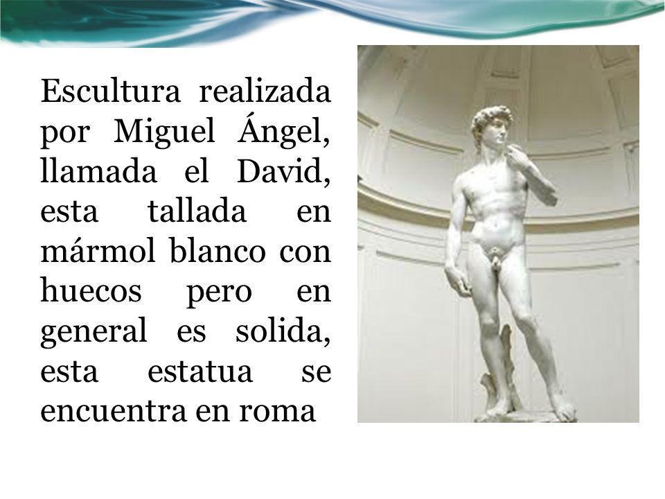 Escultura realizada por Miguel Ángel, llamada el David, esta tallada en mármol blanco con huecos pero en general es solida, esta estatua se encuentra