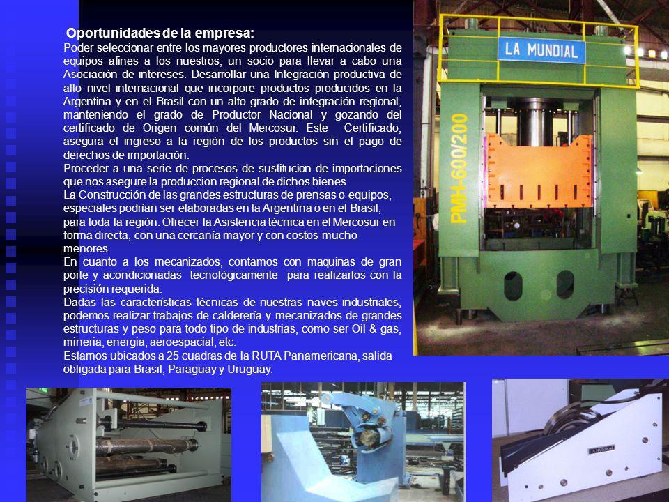 En la division Maquinaria,durante los últimos 10 años desarrollamos una agresiva incursión en el mercado Brasileño que nos ha permitido exportar hacia dicho mercado, especialmente en los ejercicios 2008, 2009 y 2010, más del 70% de nuestra producción.En el año 2001 se comenzo a proveer a la industria autopartista Argentina de piezas metalicas.