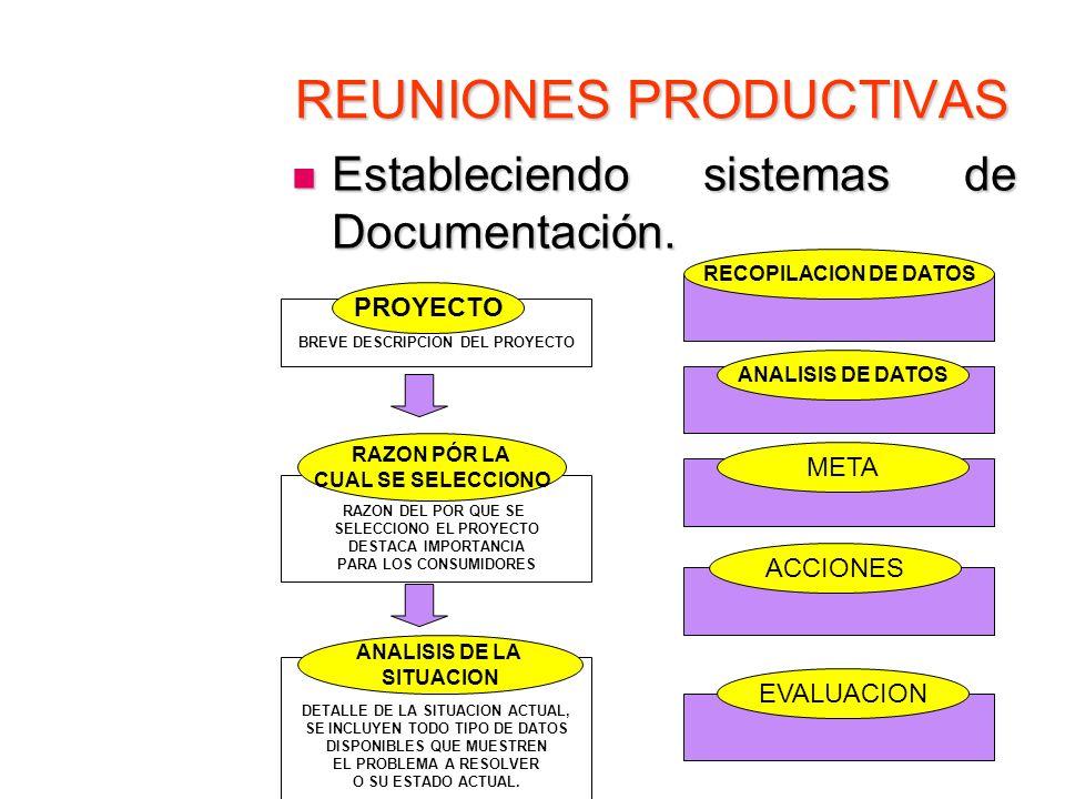 REUNIONES PRODUCTIVAS Estableciendo sistemas de Documentación. Estableciendo sistemas de Documentación. BREVE DESCRIPCION DEL PROYECTO PROYECTO RAZON