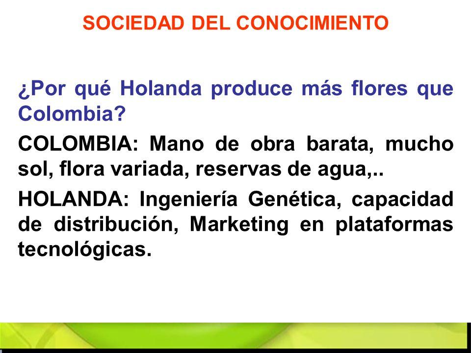 ¿Por qué Holanda produce más flores que Colombia? COLOMBIA: Mano de obra barata, mucho sol, flora variada, reservas de agua,.. HOLANDA: Ingeniería Gen