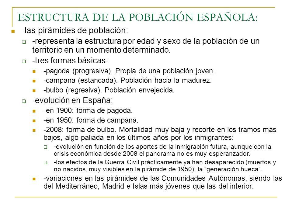 ESTRUCTURA DE LA POBLACIÓN ESPAÑOLA: -las pirámides de población: -representa la estructura por edad y sexo de la población de un territorio en un mom