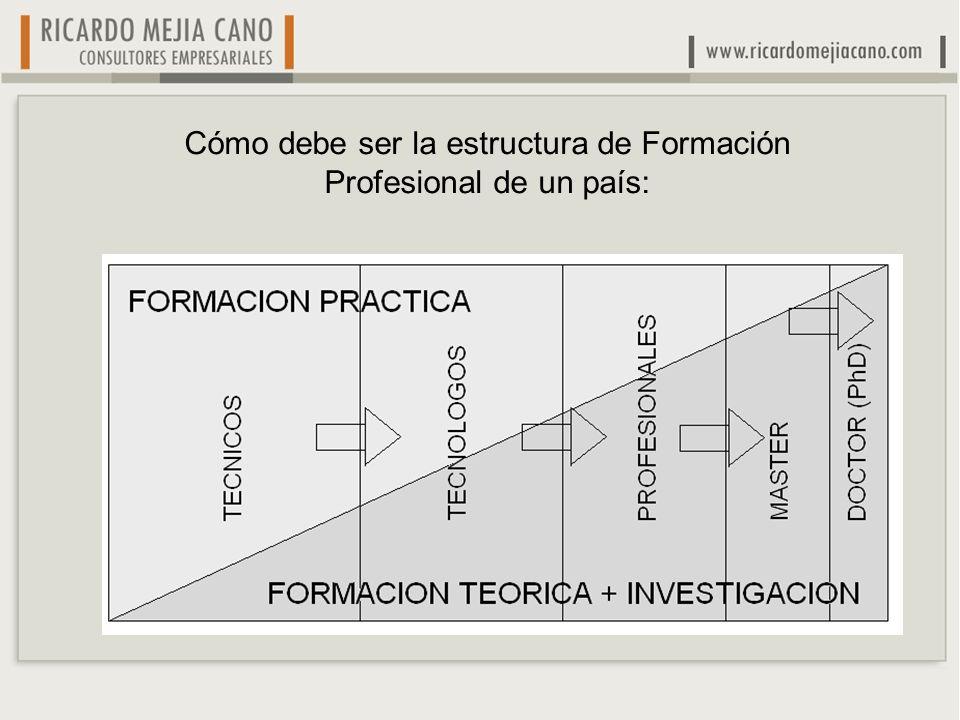Cómo debe ser la estructura de Formación Profesional de un país: