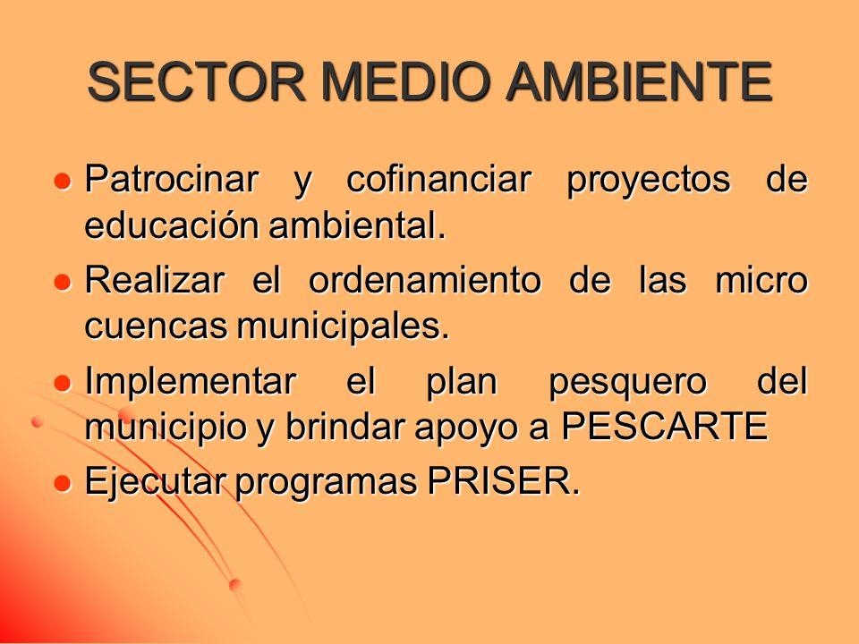 SECTOR MEDIO AMBIENTE Patrocinar y cofinanciar proyectos de educación ambiental. Patrocinar y cofinanciar proyectos de educación ambiental. Realizar e