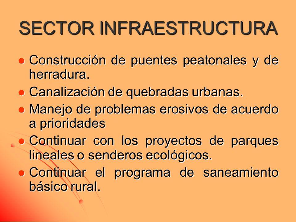 SECTOR INFRAESTRUCTURA Construcción de puentes peatonales y de herradura. Construcción de puentes peatonales y de herradura. Canalización de quebradas