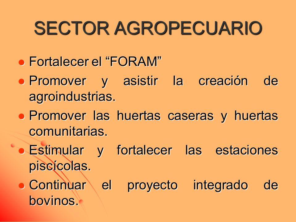 SECTOR AGROPECUARIO Fortalecer el FORAM Fortalecer el FORAM Promover y asistir la creación de agroindustrias.