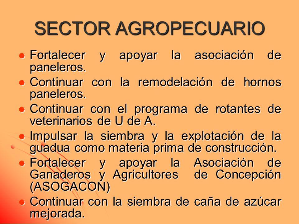SECTOR AGROPECUARIO Fortalecer y apoyar la asociación de paneleros. Fortalecer y apoyar la asociación de paneleros. Continuar con la remodelación de h