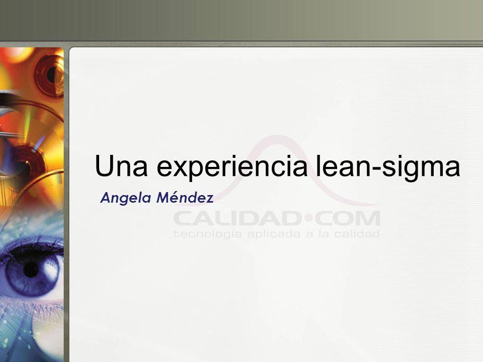 Una experiencia lean-sigma Angela Méndez