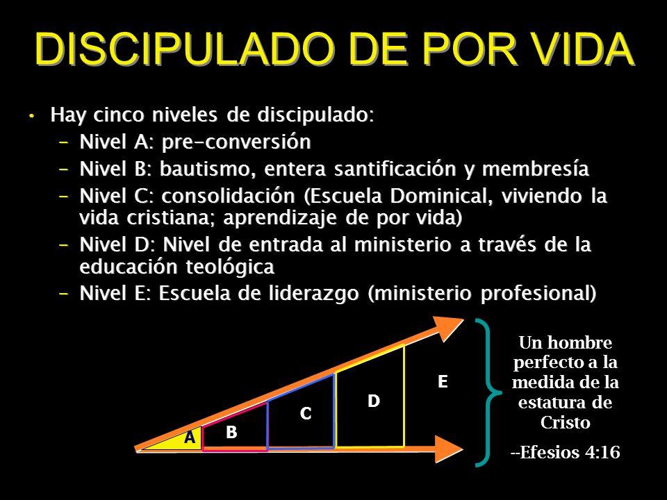 DISCIPULADO DE POR VIDA Hay cinco niveles de discipulado: –Nivel A: pre-conversión –Nivel B: bautismo, entera santificación y membresía –Nivel C: cons
