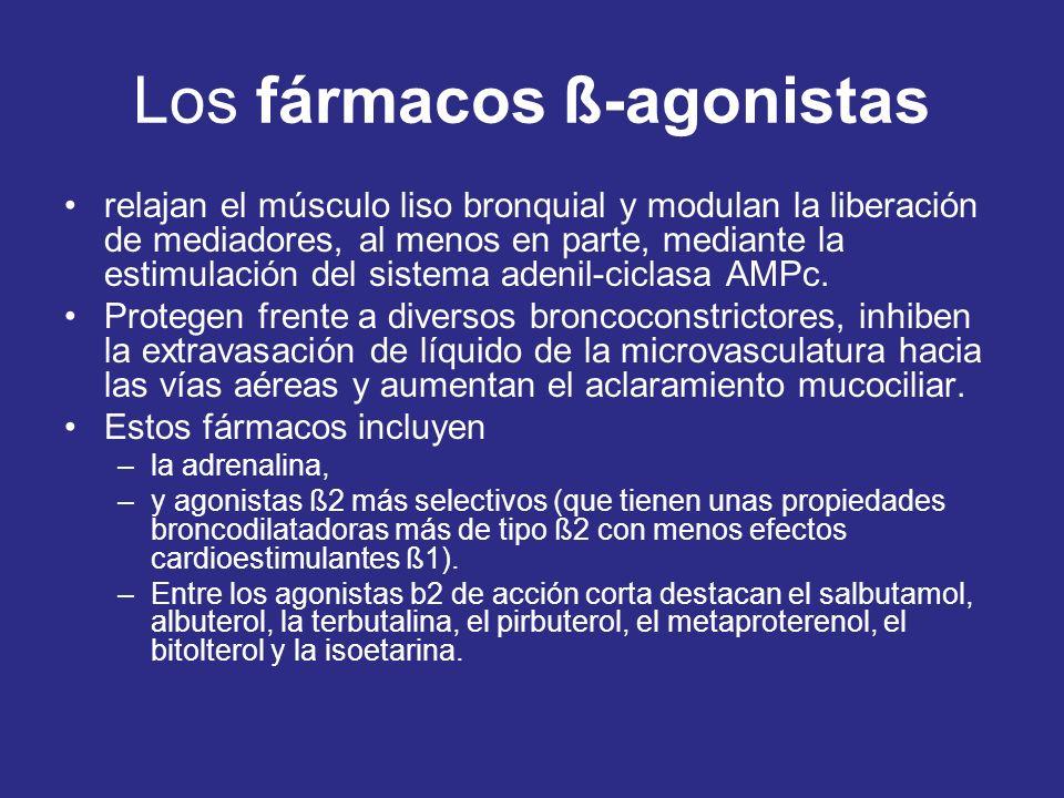 Los fármacos ß-agonistas relajan el músculo liso bronquial y modulan la liberación de mediadores, al menos en parte, mediante la estimulación del sist
