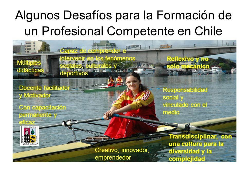 Algunos Desafíos para la Formación de un Profesional Competente en Chile Docente facilitador y Motivador Múltiples didácticas Responsabilidad social y
