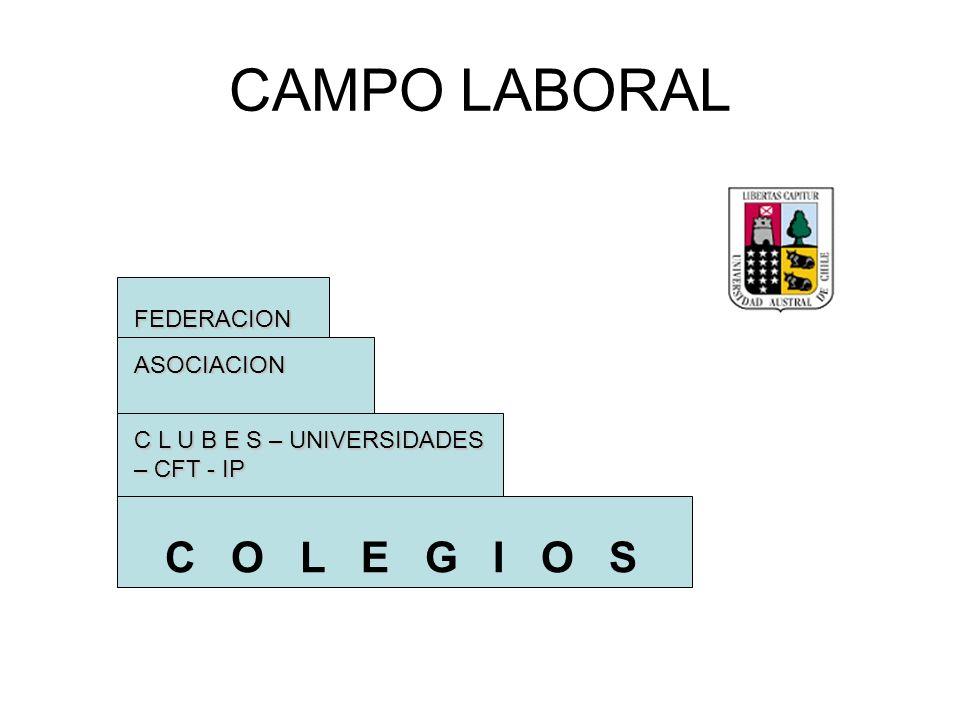 CAMPO LABORAL C O L E G I O S C L U B E S – UNIVERSIDADES – CFT - IP ASOCIACION FEDERACION