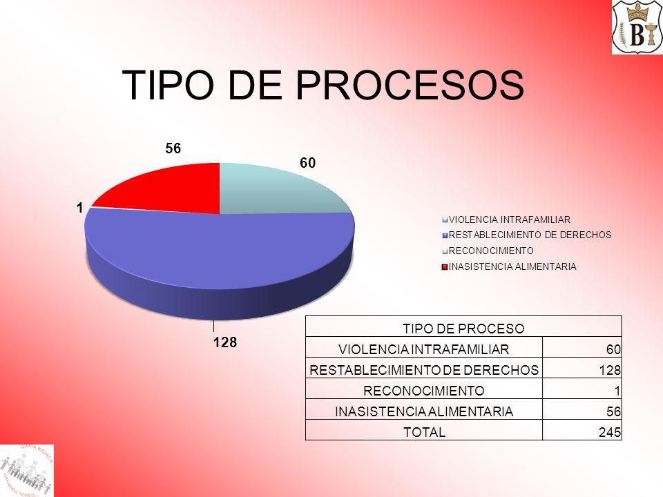 TIPO DE PROCESOS TIPO DE PROCESO VIOLENCIA INTRAFAMILIAR60 RESTABLECIMIENTO DE DERECHOS128 RECONOCIMIENTO1 INASISTENCIA ALIMENTARIA56 TOTAL245