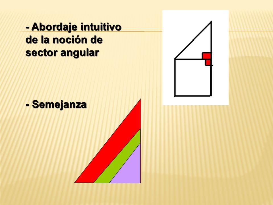 - Abordaje intuitivo de la noción de sector angular - Semejanza