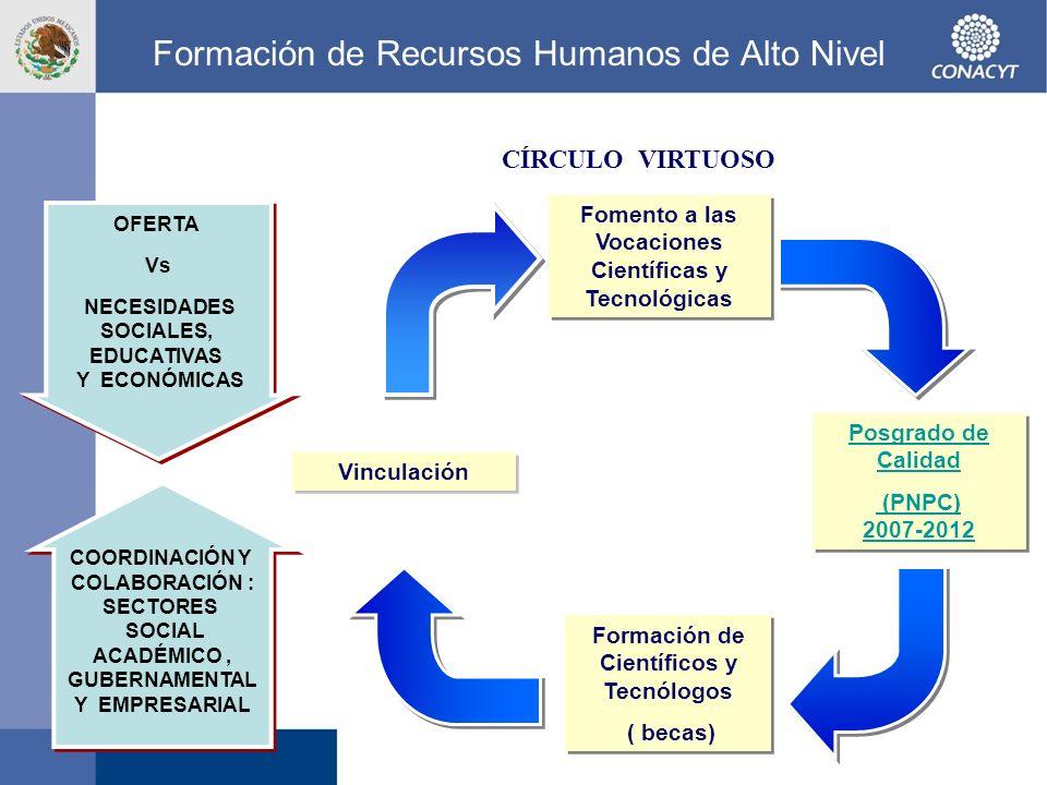 Formación de Recursos Humanos de Alto Nivel Fomento a las Vocaciones Científicas y Tecnológicas Formación de Científicos y Tecnólogos ( becas) Formaci