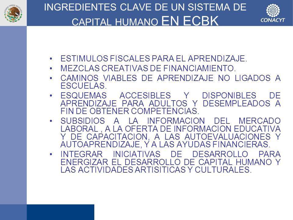 INGREDIENTES CLAVE DE UN SISTEMA DE CAPITAL HUMANO EN ECBK ESTIMULOS FISCALES PARA EL APRENDIZAJE. MEZCLAS CREATIVAS DE FINANCIAMIENTO. CAMINOS VIABLE