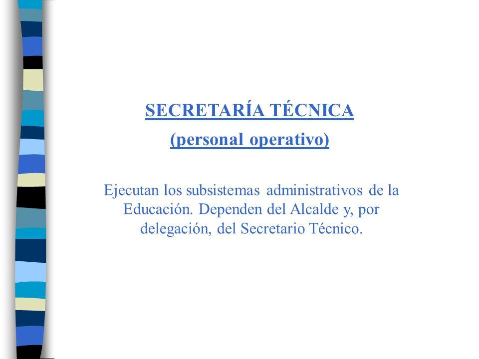 DINÁMICA DE FUNCIONAMIENTO Básicamente, el CEM funciona como un Directorio Ejecutivo.