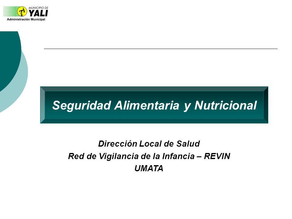 Seguridad Alimentaria y Nutricional Dirección Local de Salud Red de Vigilancia de la Infancia – REVIN UMATA