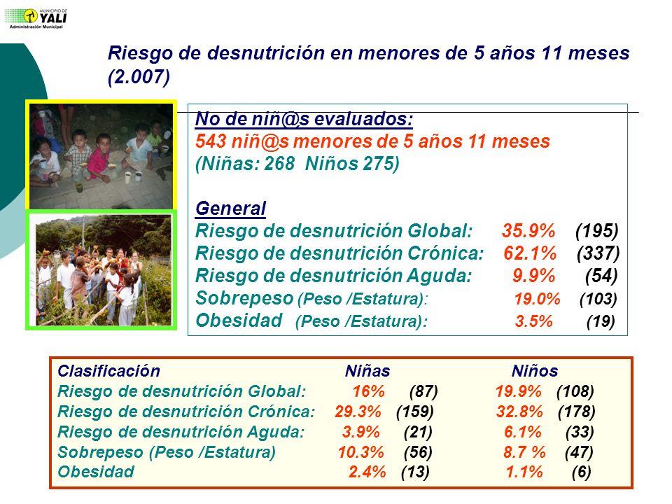 Riesgo de desnutrición en menores de 5 años 11 meses (2.007) No de niñ@s evaluados: 543 niñ@s menores de 5 años 11 meses (Niñas: 268 Niños 275) Genera