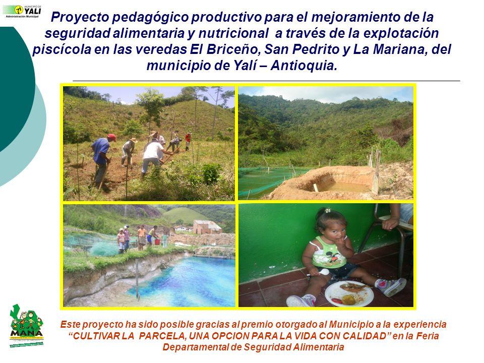 Proyecto pedagógico productivo para el mejoramiento de la seguridad alimentaria y nutricional a través de la explotación piscícola en las veredas El B