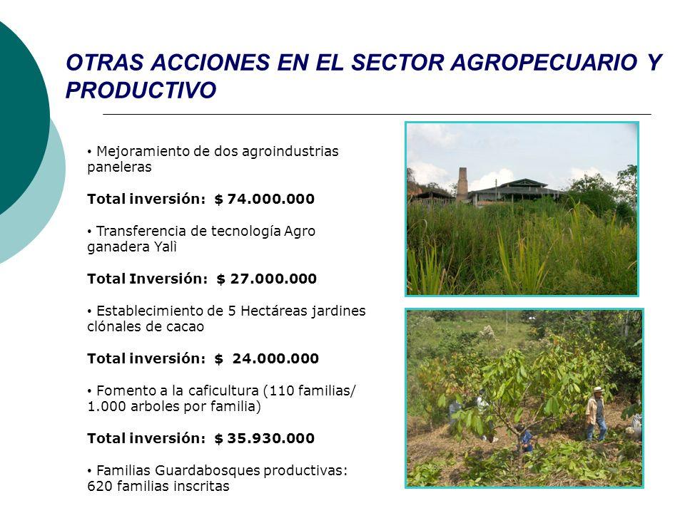 OTRAS ACCIONES EN EL SECTOR AGROPECUARIO Y PRODUCTIVO Mejoramiento de dos agroindustrias paneleras Total inversión: $ 74.000.000 Transferencia de tecn