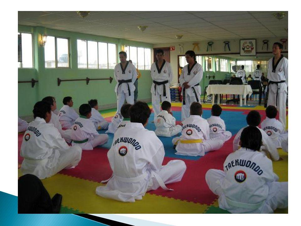 La Organización HARAN TKD inicia en enero de 2005.