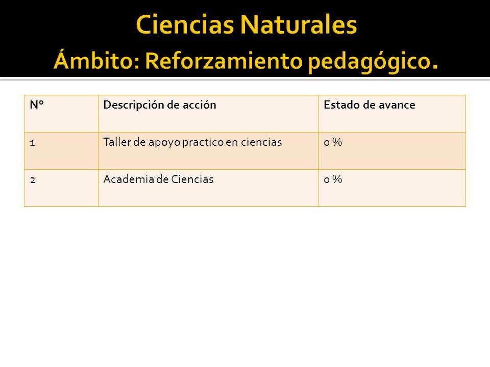 N°Descripción de acciónEstado de avance 1Taller de apoyo practico en ciencias0 % 2Academia de Ciencias0 %