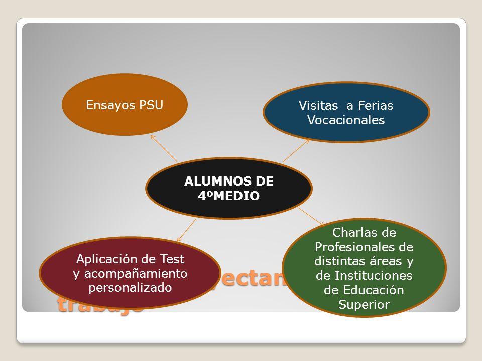 Ejes que proyectan nuestro trabajo Ensayos PSU Visitas a Ferias Vocacionales Aplicación de Test y acompañamiento personalizado Charlas de Profesionales de distintas áreas y de Instituciones de Educación Superior ALUMNOS DE 4ºMEDIO
