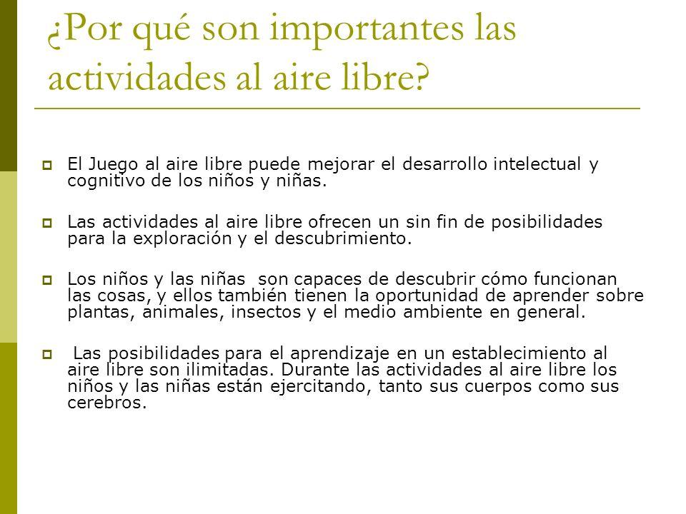 Desarrollo social y la interacción son también importantes aspectos de juego al aire libre.