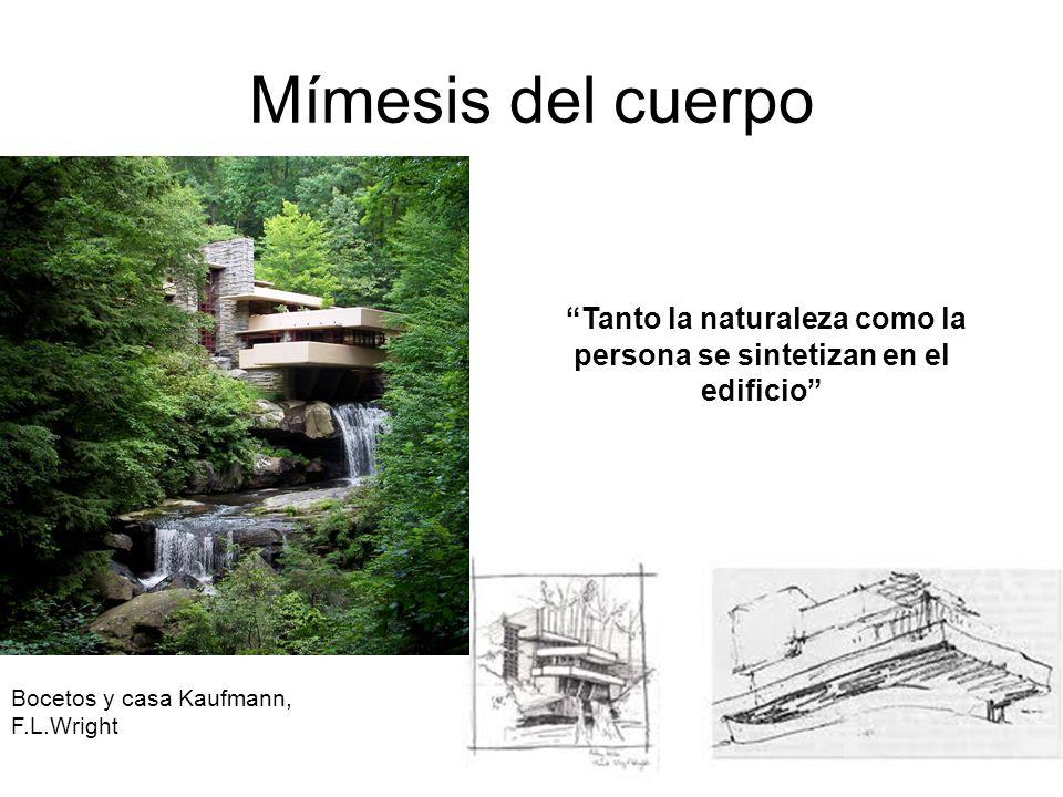 Mímesis del cuerpo Bocetos y casa Kaufmann, F.L.Wright Tanto la naturaleza como la persona se sintetizan en el edificio