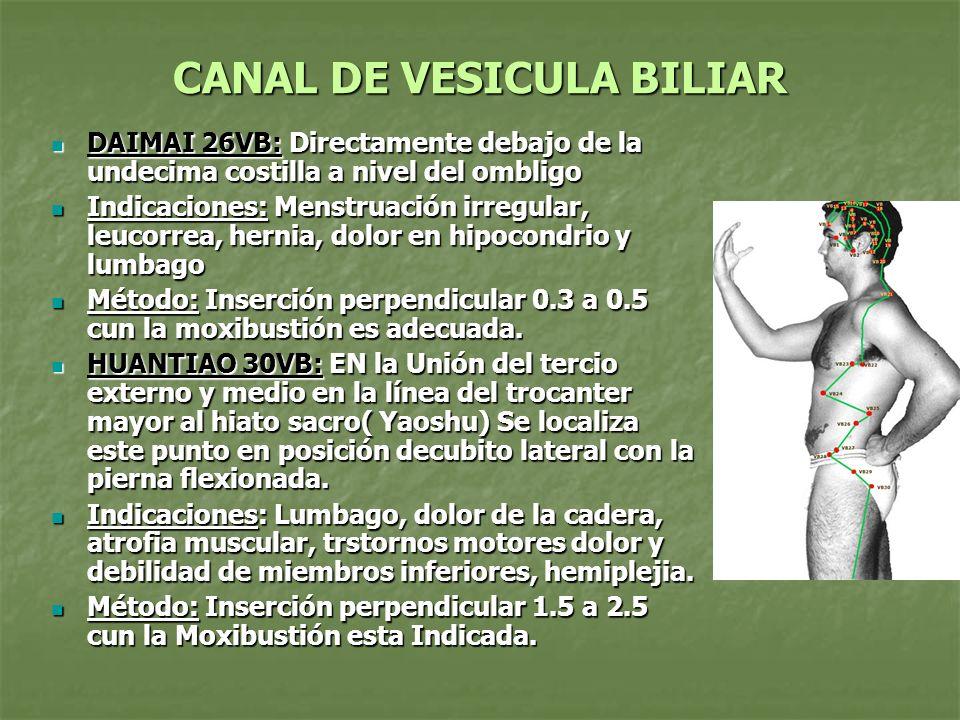 CANAL DE VESICULA BILIAR DAIMAI 26VB: Directamente debajo de la undecima costilla a nivel del ombligo DAIMAI 26VB: Directamente debajo de la undecima