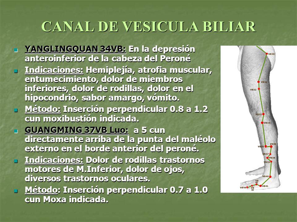 CANAL DE VESICULA BILIAR YANGLINGQUAN 34VB: En la depresión anteroinferior de la cabeza del Peroné YANGLINGQUAN 34VB: En la depresión anteroinferior d