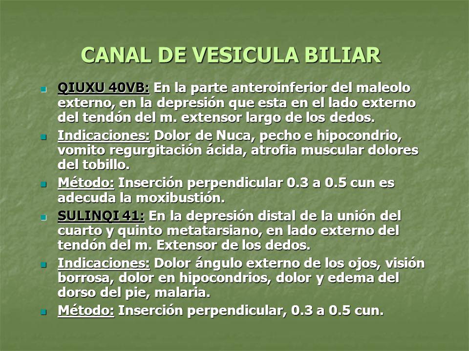 CANAL DE VESICULA BILIAR QIUXU 40VB: En la parte anteroinferior del maleolo externo, en la depresión que esta en el lado externo del tendón del m. ext