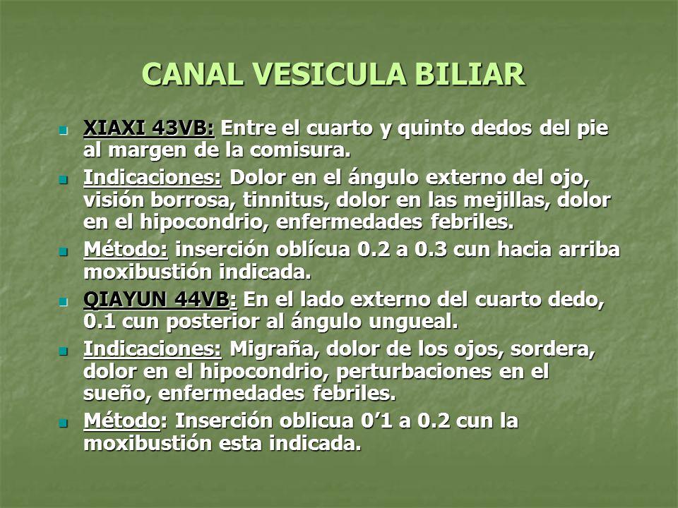 CANAL VESICULA BILIAR XIAXI 43VB: Entre el cuarto y quinto dedos del pie al margen de la comisura. XIAXI 43VB: Entre el cuarto y quinto dedos del pie