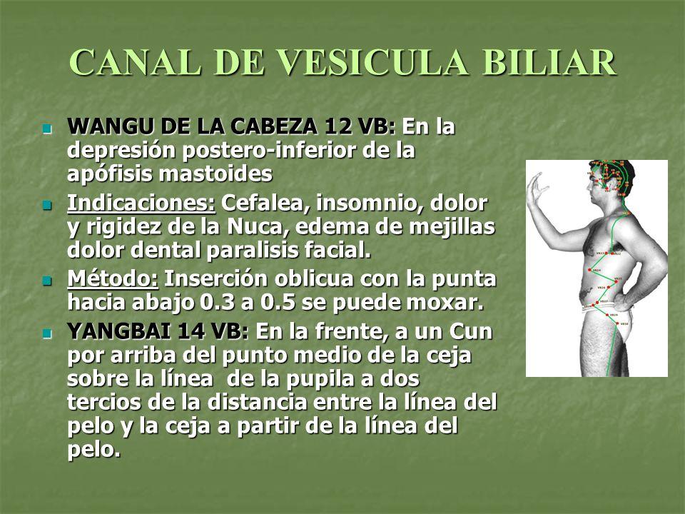 CANAL DE VESICULA BILIAR FENGCHI 20VB: En la parte posterior de la nuca, por debajo del hueso occipital, en la depresión entre la parte superior del músculo esternocleidomastoideo y del m.